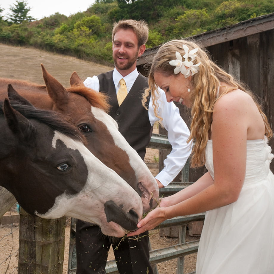 wedding-thnl-_0016_Layer 16